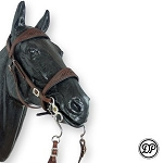 DP Soft Feel Baroque Decor Headstall