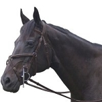 Exselle Elite Plain Raised Jumper Bridle