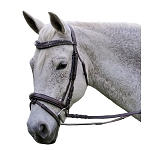 Exselle Elite Fancy Stitched Flash Caveson Padded Bridle