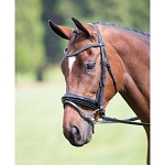 Vegas Dressage Bridle with Crystal Browband